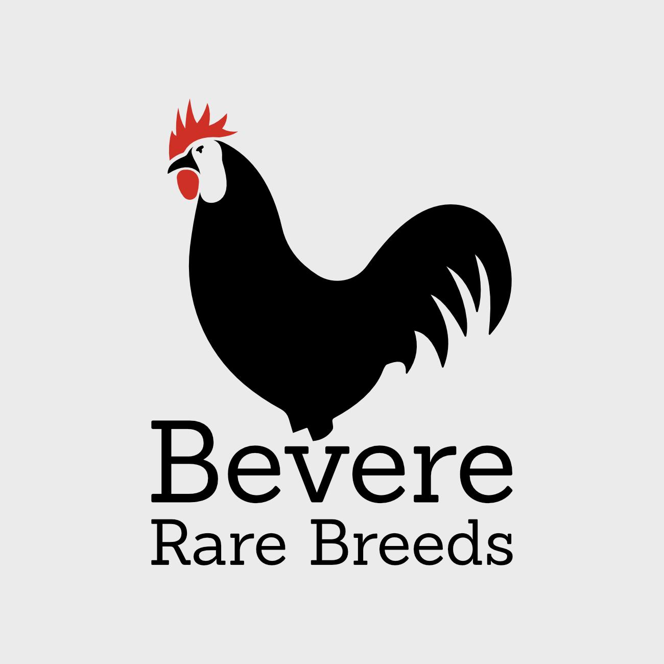 Bevere Rare Breeds logo for UK breeders
